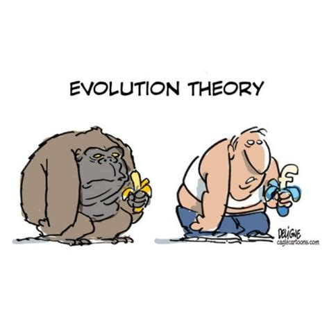 Essays on the theory of evolution